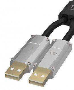 iFi Audio Gemini - kredyt 10x0% + dostawa gratis, salon dealerski, odsłuchy
