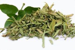 Stevia liście suszone 1kg