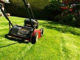 Koszenie trawy, prace ogrodowe,wycinka drzew