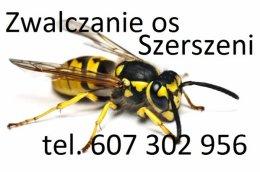 Usuwanie gniazd os i szerszeni osy szerszenie Opole Nysa Namysłów