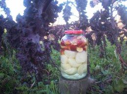 Kiszone jabłka z cebulą