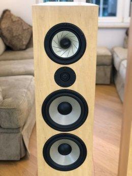 T+A TS200 Criterion kolumny głośnikowe