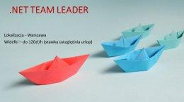 .Net Team Leader