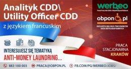 Analityk CDD/ Utility Officer CDD z językiem francuskim - praca stacjonarna w Krakowie