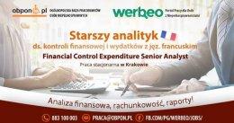 Starszy analityk ds. kontroli finansowej i wydatków z jęz. Francuskim w Krakowie.