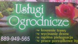Usługi Ogrodnicze, koszenie trawy, wycinanie drzew