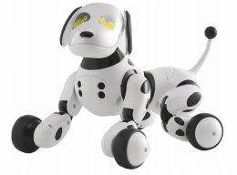 INTERAKTYWNY PIESEK ZDALNIE STEROWANY ROBOT