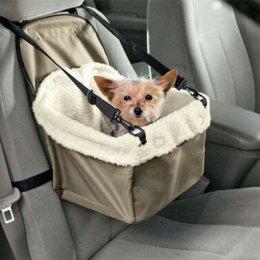 Transporter samochodowy dla psa