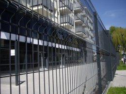 panele panel płot ogrodzenie ogrodzenia panelowe grafit czarny
